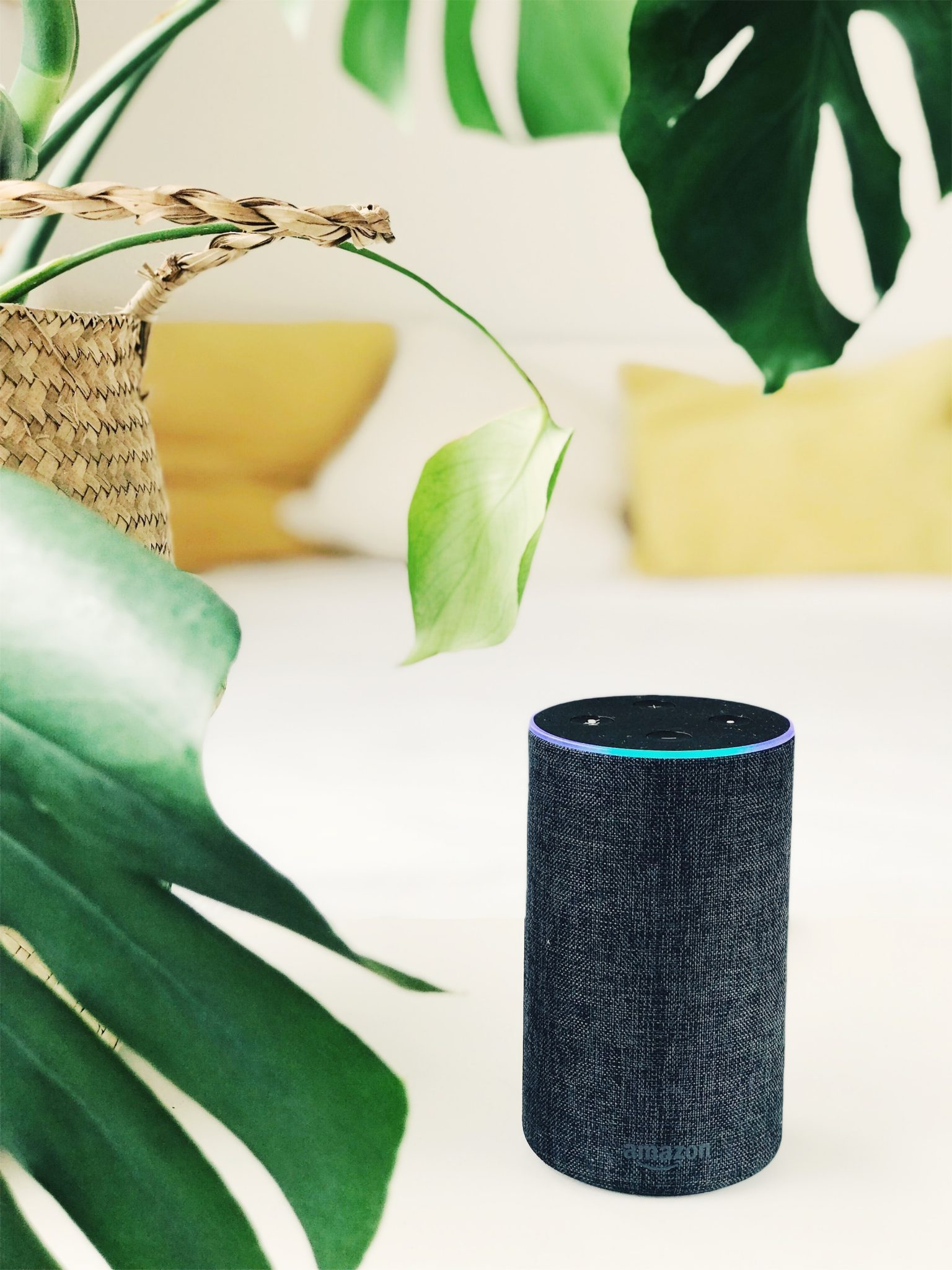 FirstLight Home Care - Personalizing Amazon Alexa for Seniors