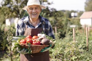 Fruits and Veggies for Seniors